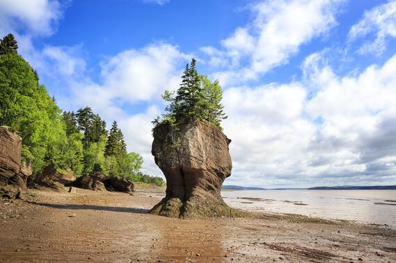 Hopewell rocks, centrally located between Moncton and Sussex  hotels